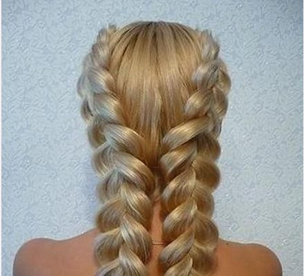 double hair braid