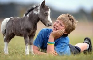 boy talking to pony