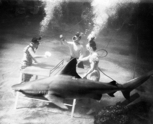 People Playing Ping Pong Under Water