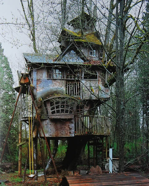 Peter Pan Treehouse Suited For Peter Pan And