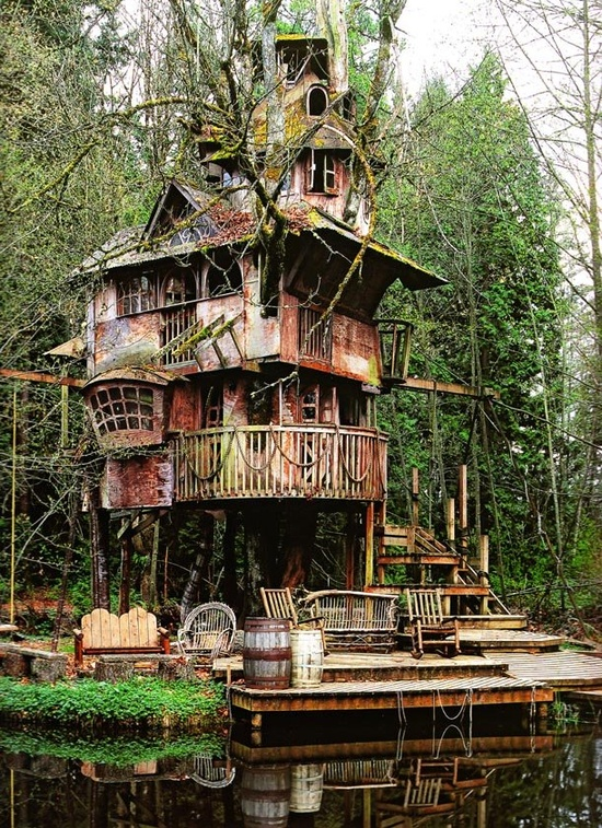 The treehouse that nobody wanted for Amazing homes tumblr