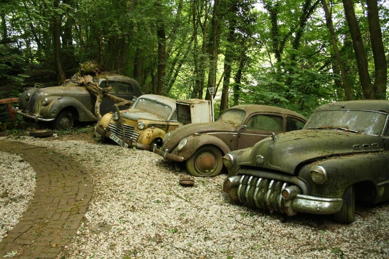 The Vintage Supercars Rotting Away In A Forest And That S How The
