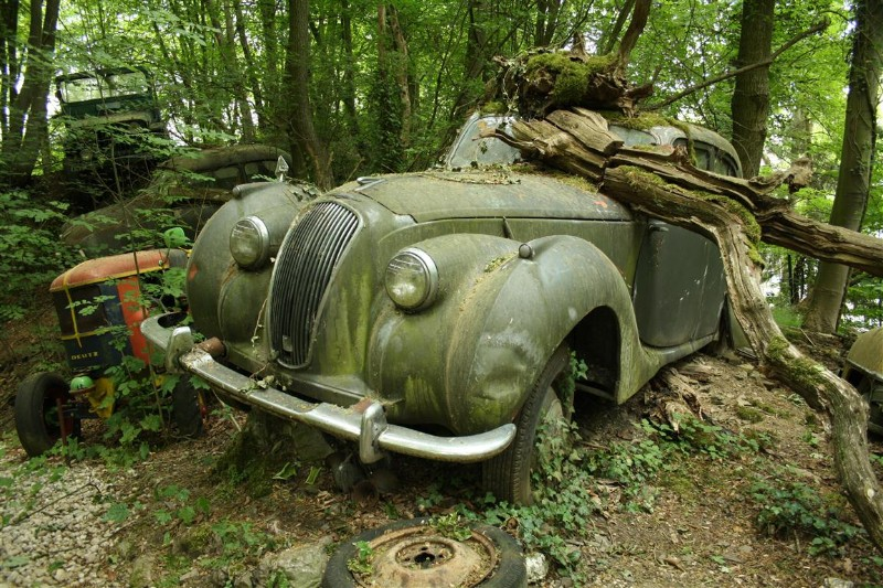 the vintage supercars rotting away in a forest and that 39 s how the owner wants it. Black Bedroom Furniture Sets. Home Design Ideas