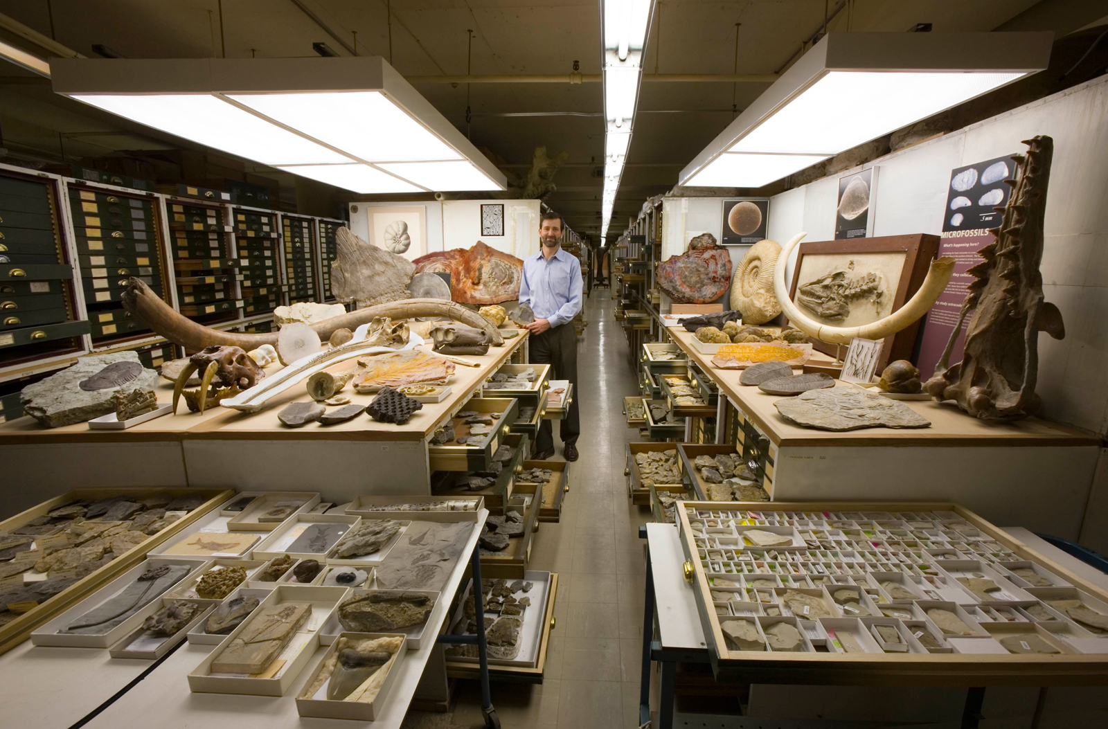 Paleobiology Collections, National Museum of Natural History