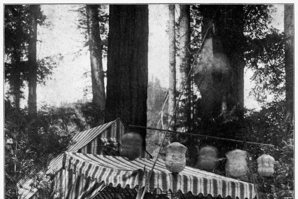 Bohemian_Grove_Camp_-_Garnett,_Sterling,_London