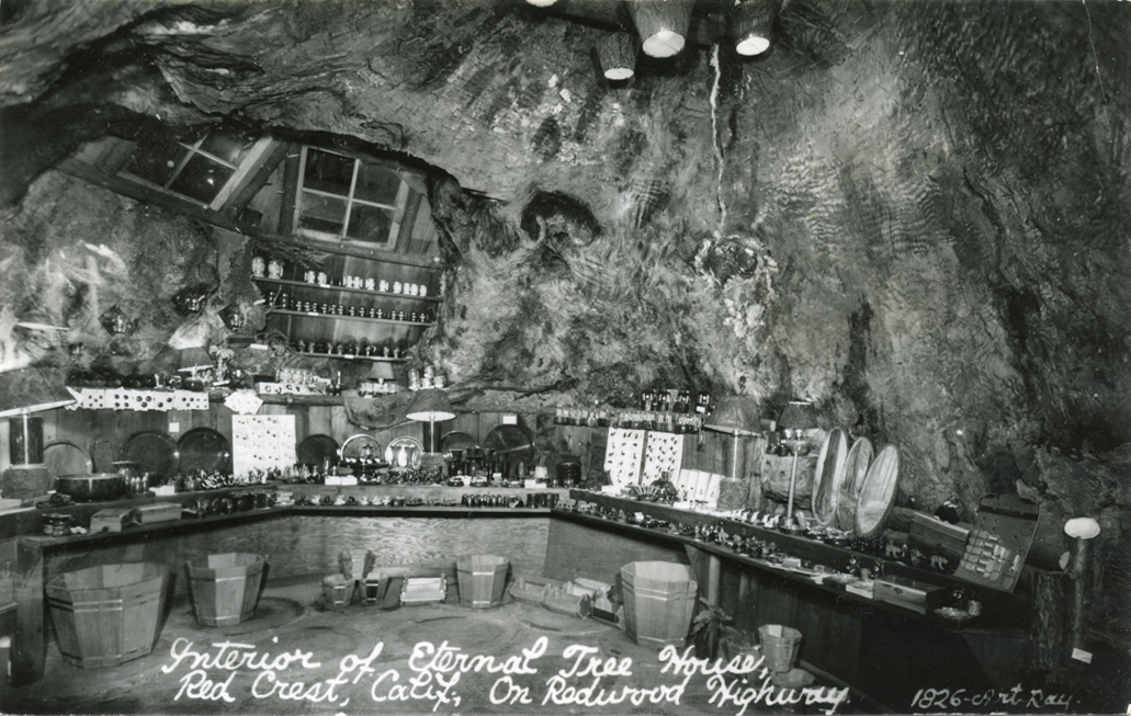 Interior_of_Eternal_Tree_House_Red_Crest_Calif_on_Redwood_Highway_1826