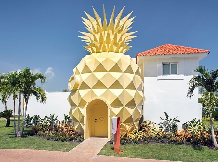 pineapplehome
