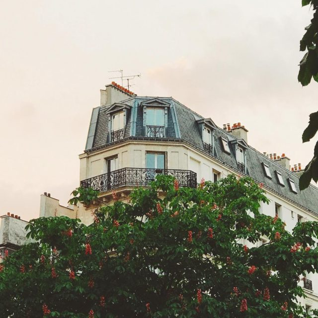 Paris treehouses Search that on MessyNessyChic and see what youhellip