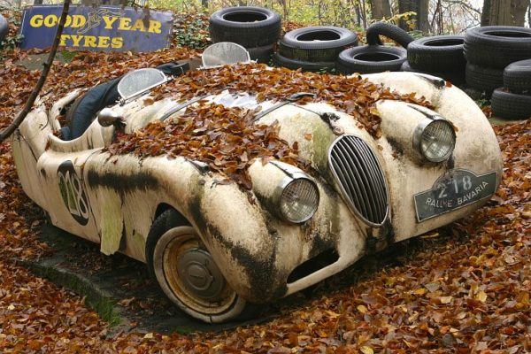 Giant Used Car Sale