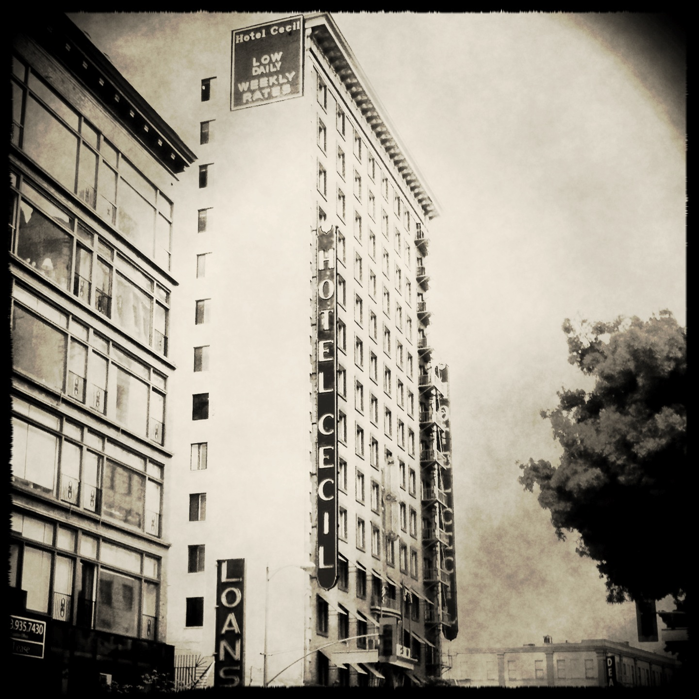 hotelcecilhistory