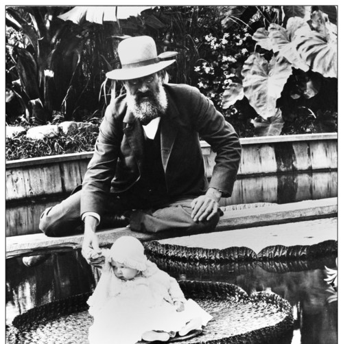 Baby on a water lily (Victoria amazonica), n.d.