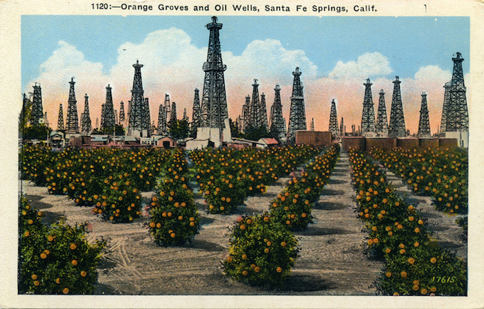 Orange_Groves_and_Oil_Wells_Santa_Fe_Springs_Calif_1120