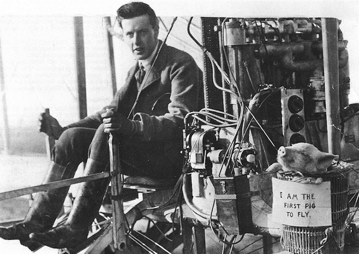The first pig to fly, 1909 (2)
