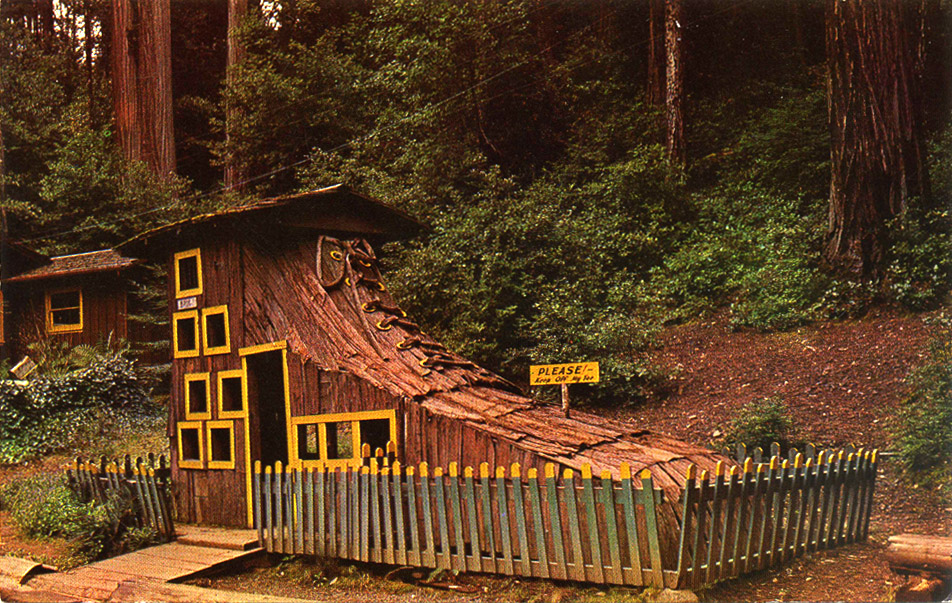 Confusion_Hill_Redwood_Highway_CA