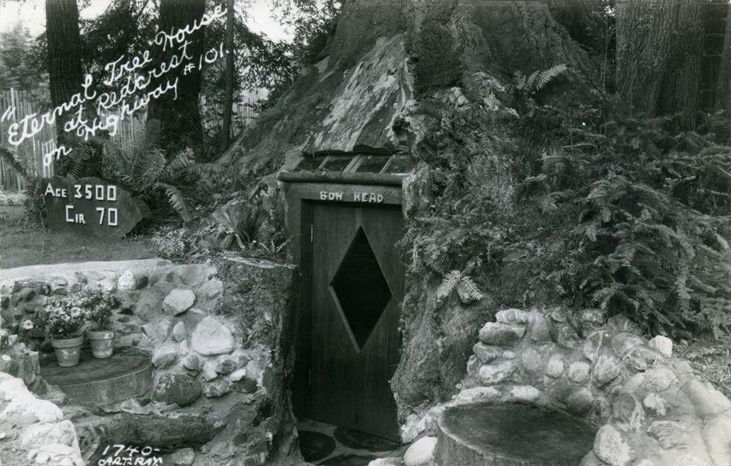 Eternal_Tree_House_at_Redcrest_on_Highway_101