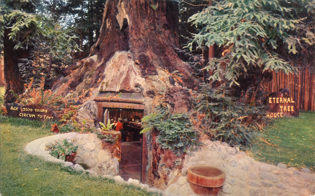 Eternal_Tree_House_at_Redcrest_on_Highway_101_C3069