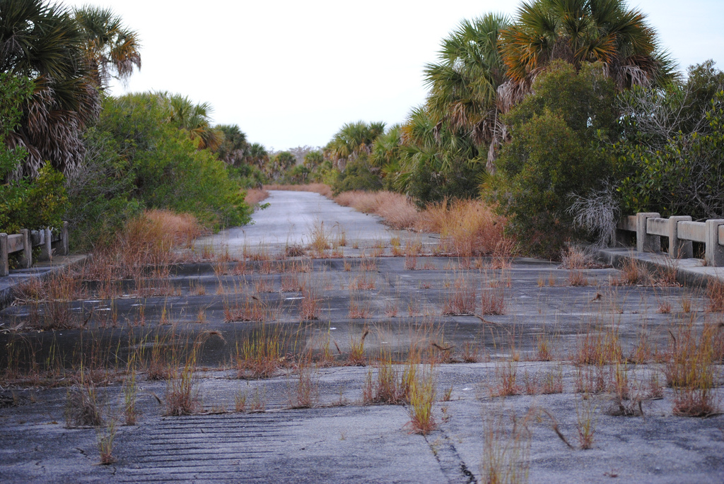 A Brief Compendium Of Abandoned Roads To Nowhere