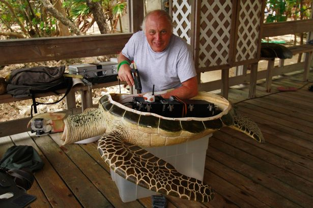 geoff-bell-and-turtle