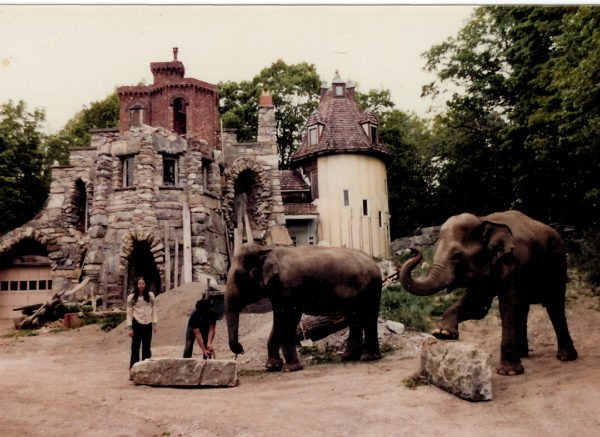 Oh, Just a New York Hippie Castle with Elephants